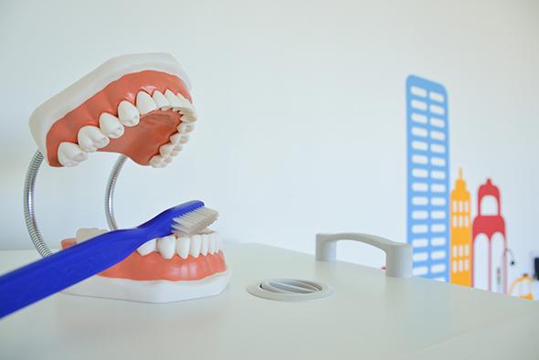 Για γερά δόντια, βούρτσισμα πρωί-βράδυ